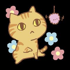 Adagio's cats