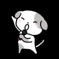 Cute Dog4