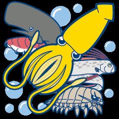 Giant squid & Benthic feeder