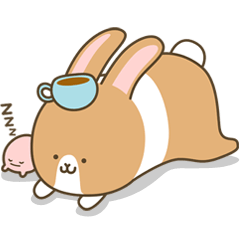 Mokatokki Coffee Rabbit
